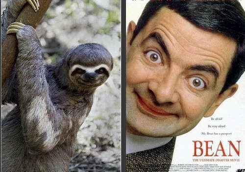 mr-bean-y-perezoso
